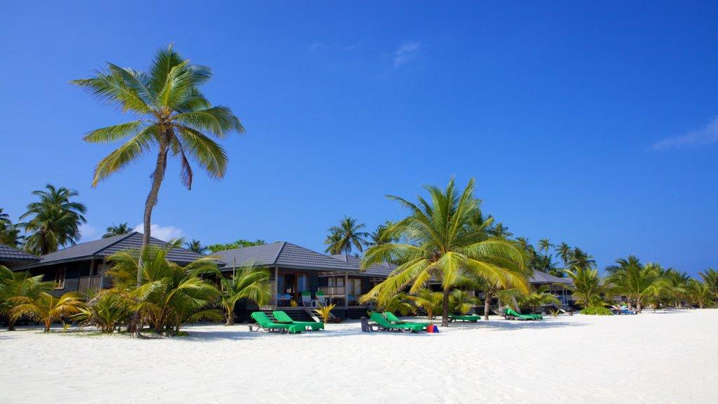Отель Kuredu Island Resort & Spa, Мальдивы